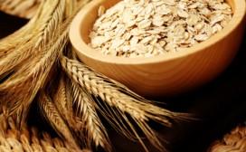 Fat burning diet - sources of fiber