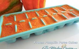 Frozen Pumpkin Puree Cubes
